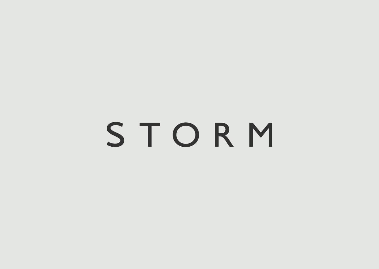 Storm logo design and branding